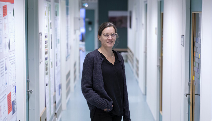 — HF er blant de som har de laveste lønningene blant vitenskapelig ansatte ved UiB. Hagen har hatt ansvar for lønnsutviklingen, sier professor Vigdis Vandvik ved UiB.