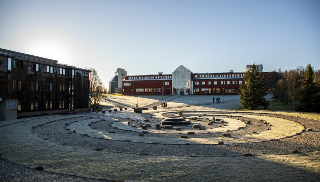 Det blir verande tomt på campus dei fyrste to vekene av vårsemesteret, bestemde regjeringa laurdag. Her frå UiTs campus i Tromsø. .