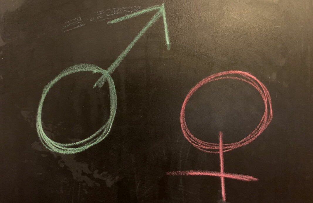 Men uansett, hvordan kunne det ha seg at 12 av 13 stillinger gikk til mannlige søkere? Har de kvinnelige søkerne plutselig blitt mye mindre kompetente?, spør Agnes Andenæs.