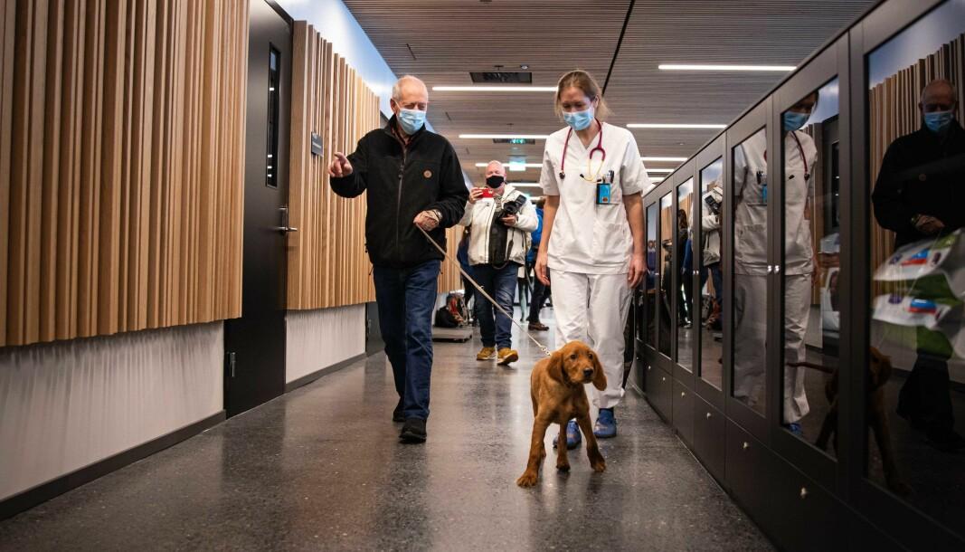 Første pasient i Ås på et bygg som stadig blir dyrere: Balder (3 måneder), Eier John Schau og behandlende dyrlege Heidi Sjetne Lund.