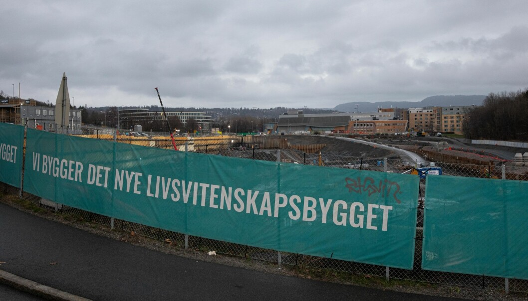Fra byggeplassen til det nye Livsvitenskapsbygget (november 2020).