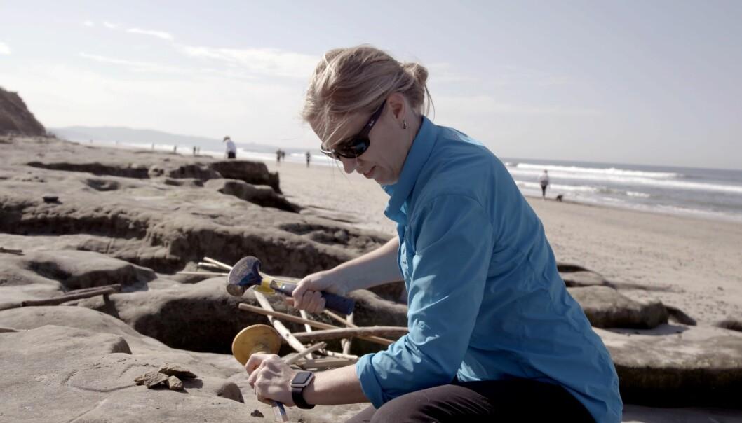 Jane Willenbring er geolog og forskar mellom anna på havnivå. Ho ønskjer å vera ein mentor for unge forskarar.