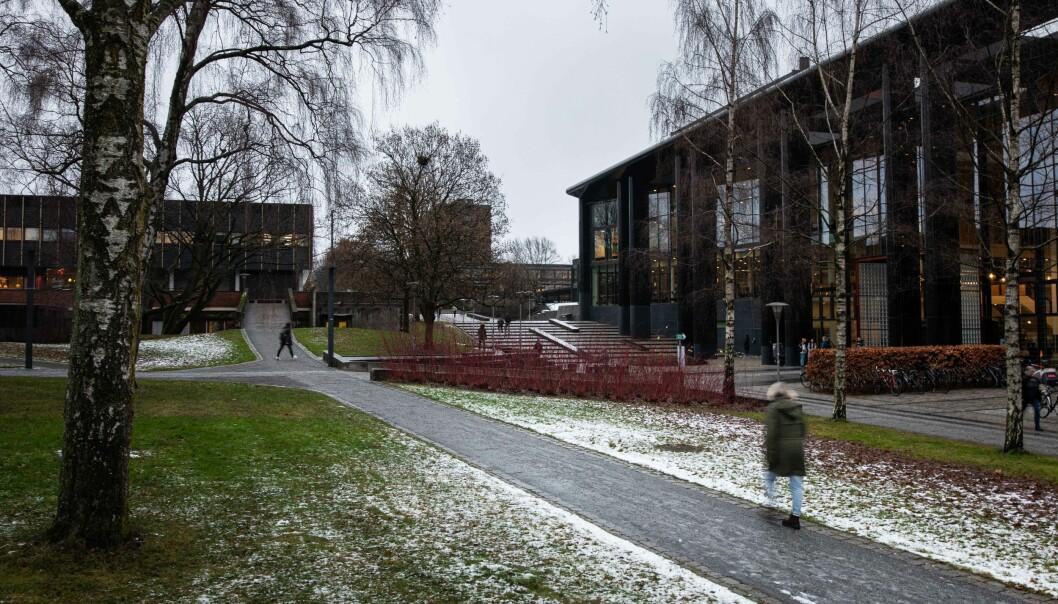 Det er øde på universitetet. Dekanene på Universiteter og Oslo mener det er på tide å åpne campus og lesesalene.