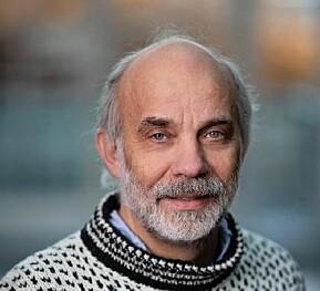Professor Arild Blekesaune.