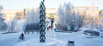 Umeå universitet krever eierskap til forskningsdata