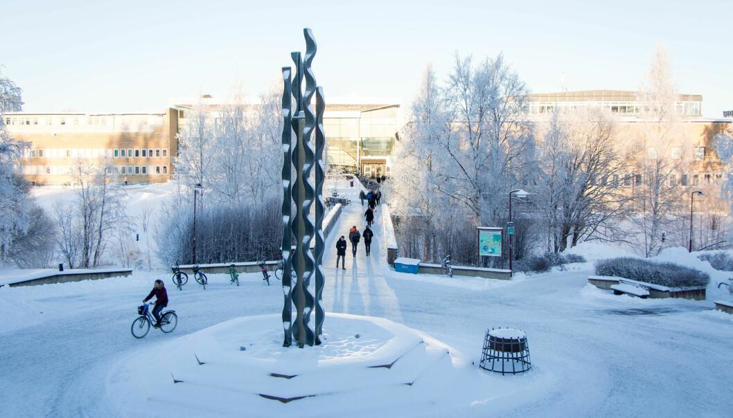 Det strides om hvem som skal ha eierskap til dataene som forskere ved Umeå universitet fremstiller.