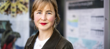 Oljesmurte NTNU-stiftelser: Har millioner i olje og gass
