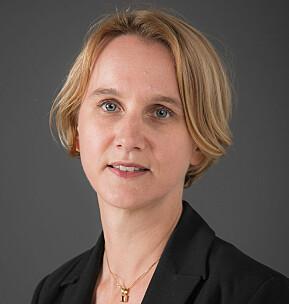 Det er lettare å få nokon til å snakka om korleis det er å kombinera små barn og karriere, seier professor Cathrine Holst.