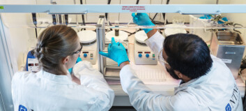 NTNUs covid-19-test: Fra grunnforskning til innovasjon på én uke