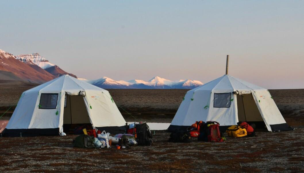 Teltleir på Svalbard. Både UiT og Høgskulen i Volda utdannar dei som skal ta med seg andre ut i naturen.