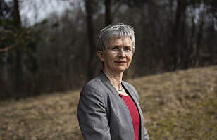 Professor Grimstad om legeutdanningen: Det mangler en helhetlig plan