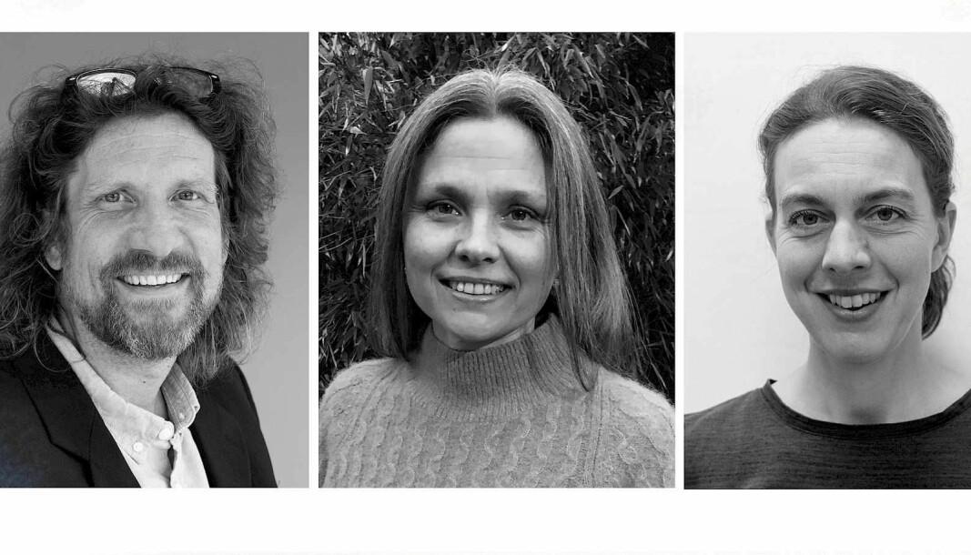 Professor og dekan Tomas Sundnes Drønen, professor Ellen Vea Rosnes og førsteamanuensis Beate Jelstad Løvaas er alle tildelt status som merittert underviser.