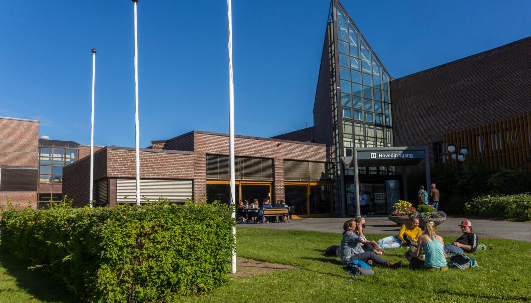 Det er stor uro blant de fleste fagansatte ved lærerutdanningen ved UiT Norges arktiske universitets campus i Alta.