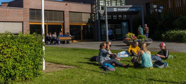Ansatte slår alarm om nedbygging av lærerutdanning i Alta