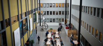 Hva gjør DU, rektor Curt Rice, for å skape interesse og entusiasme rundt Campus Romerike?