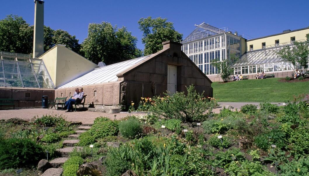 I 2019 hadde UiOs to museer Kulturhistorisk museum (inkl. Vikingtidsmuseet) og Naturhistorisk museum (inkl. Botanisk hage) begge mer enn 700 000 besøkende hver