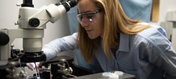 NTNU med milliondryss til forskere for oppfinnelser