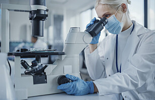 Nå er det over 8,8 millioner forskere på kloden, se hvor de befinner seg