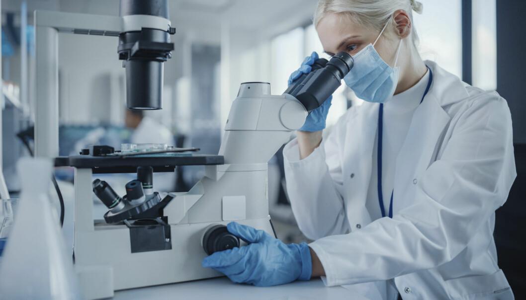Antallet forskere økte med over 13 prosent fra 2014-2018.