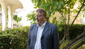 Vidar Strømme var advokat for Arnved Nedkvitne i lagmannsretten, og har nå satt seg inn i Eikrem-saken.