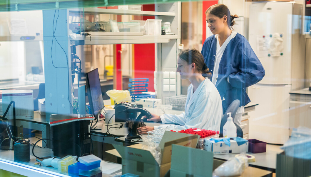 Hanne Vasstrand (sitjande) og Marie Ressem byrja som studentmedarbeidarar hos Mikrobiologisk avdeling. No skal dei jobba her i sommar, og deretter har dei fått stilling ut året.