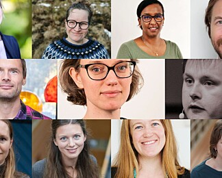 11 nye forskertalenter inn i Akademiet for yngre forskere