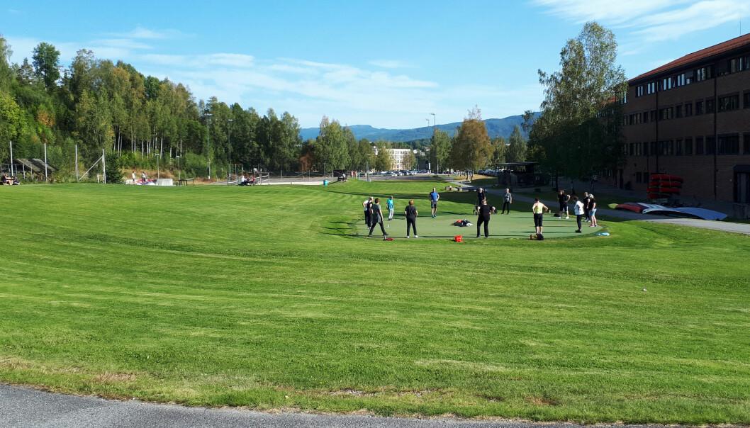 Her på denne tomten i Bø, vegg i vegg med dagens eksisterende universitetsbygg, skal den nye forksningsparken bygges. Tomten er verdt rundt to millioner kroner, men de pengene slipper USN å betale.