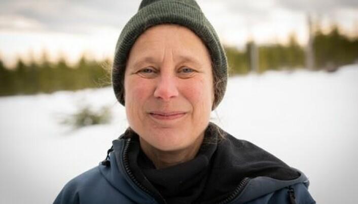 Professor Barbara Zimmermann tror at allmennheten setter forskningen i sammenheng med det politiske, og at det spiller en rolle når det nå viser seg at rovdyrforskningen har lav tillit.